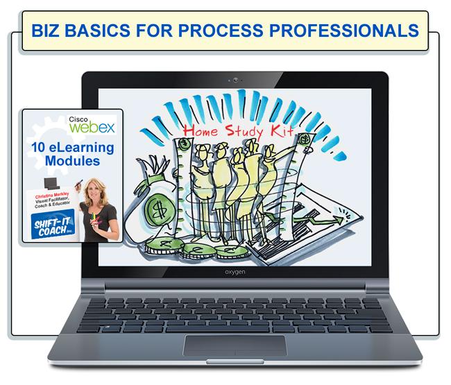 Biz Basics for Process Professionals Home Study Kit