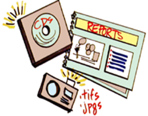 files-reports