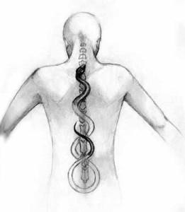 kundaliniprocess-spine